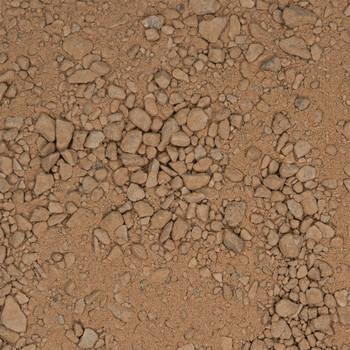 CEDEC - Bronze Dry