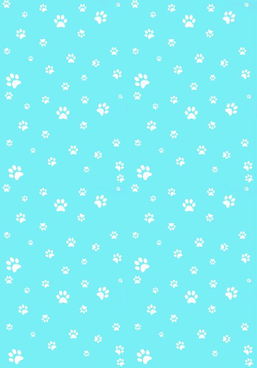 White Paw Prints on Aqua - Small