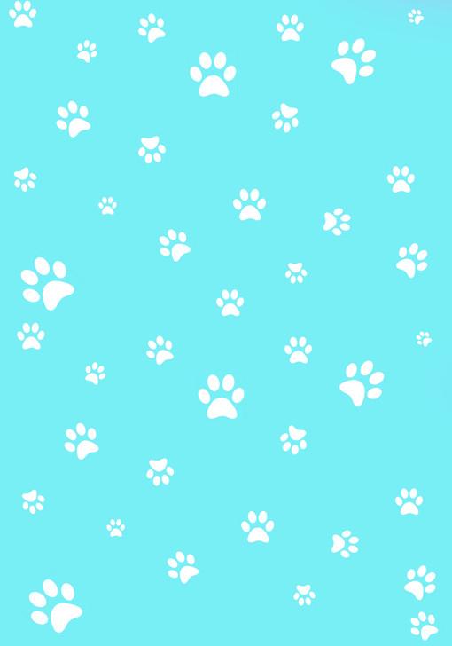 White Paw Prints on Aqua