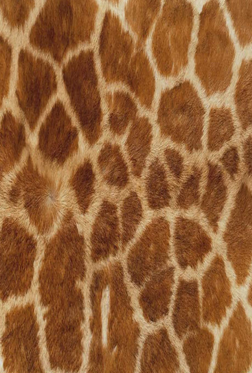 Giraffe Cross Stitch Fabric