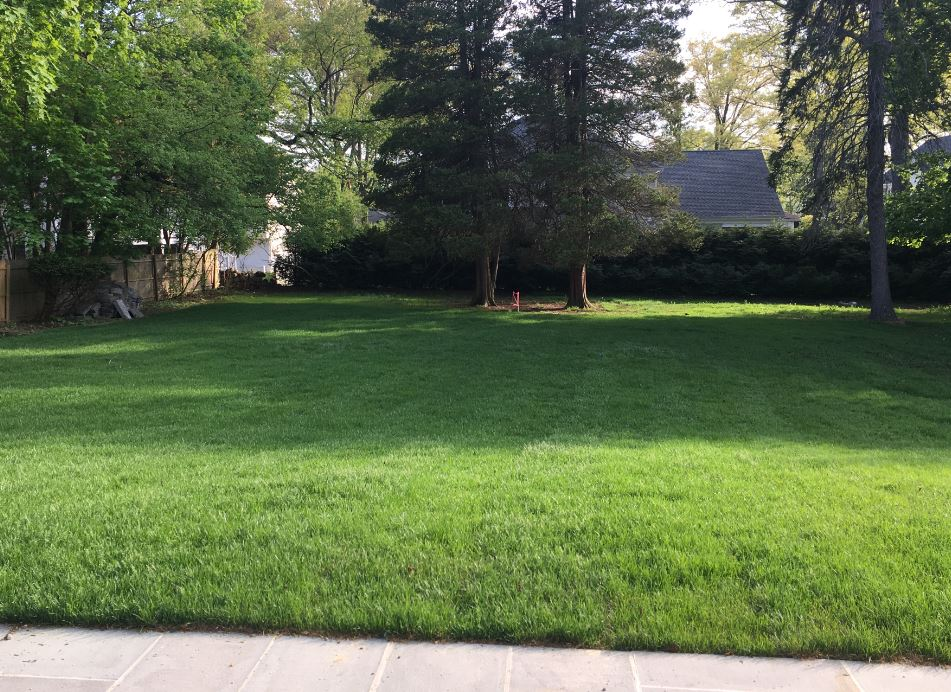Lawncare Example