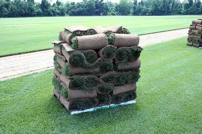 Pallet of Sod - Montgomery County