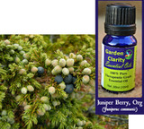 Juniper Berry, Organic