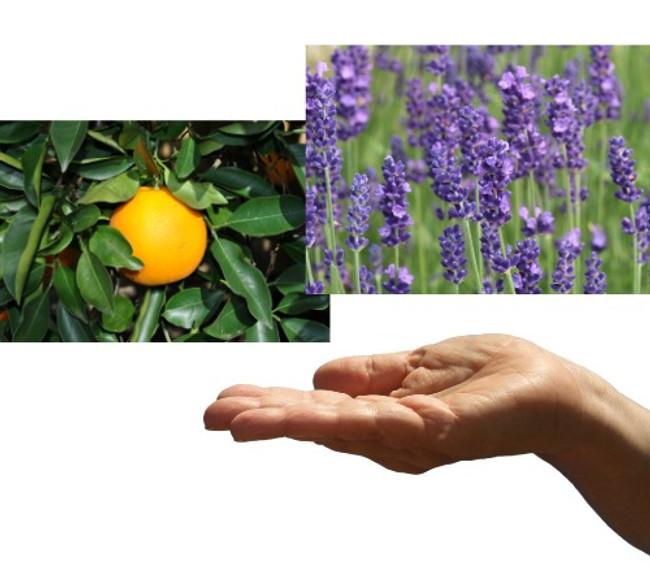 Citrus Hand Cleanser Recipe
