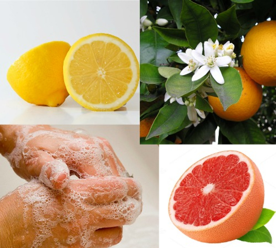 Citrus Hand and Bath Liquid Soap Recipe