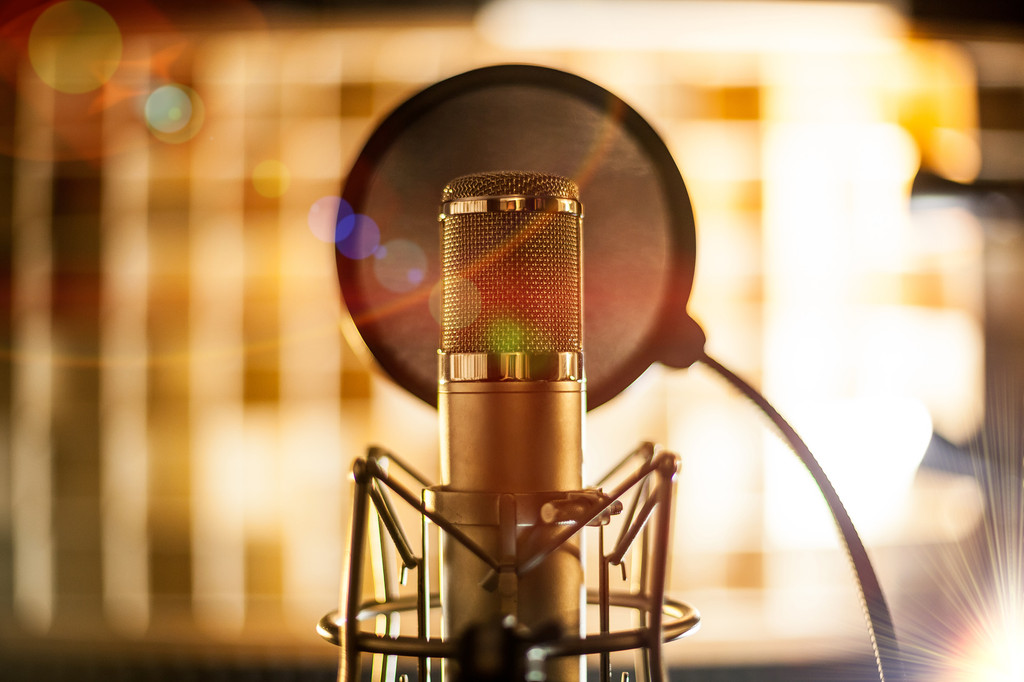 How to Choose the Perfect Condenser Microphone for You
