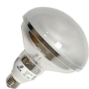 Longstar FE-R40D-20W 120V 5000K 60Hz 330mA R40 CFL Light Bulb