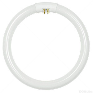 TCP 32032 T6 Circline Lamp
