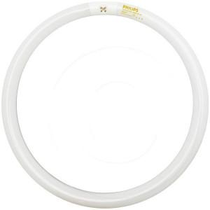 Philips FC16T9/Cool White Plus 40 Watt Circline 391185 4100K