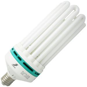Longstar FE-IIIB-200W 120V 5000K 60Hz 2500mA CFL 8U Light Bulb