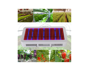 Full Spectrum LED Grow Light 600W