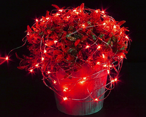 Seed Fairy Lights LED Red 2M 2 Sets