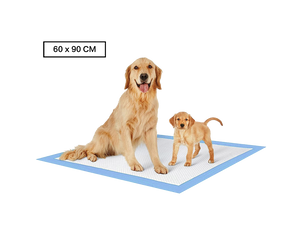 80 pk Dog Training Pads 60 x 90 cm