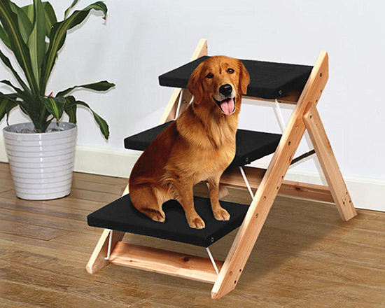 2 in 1  Pet  Stair Ladder