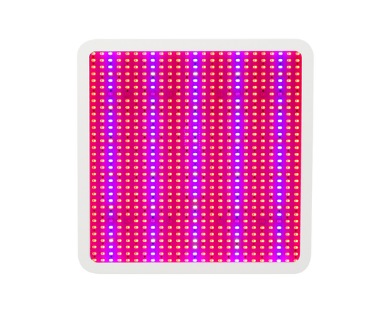 Full Spectrum LED Grow Light LED 800W