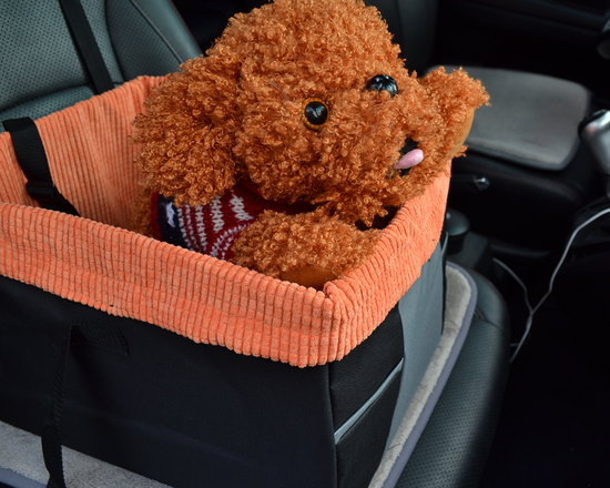 Dog Booster Seat Orange