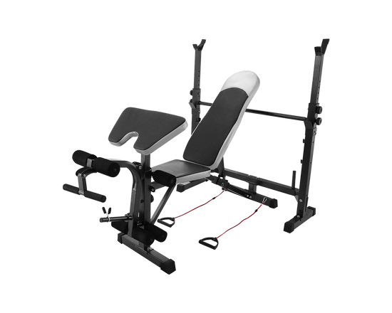 Multi Station Workout Bench