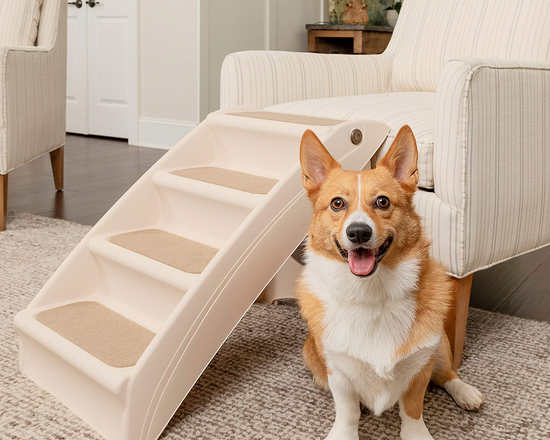 Foldable Pet Steps