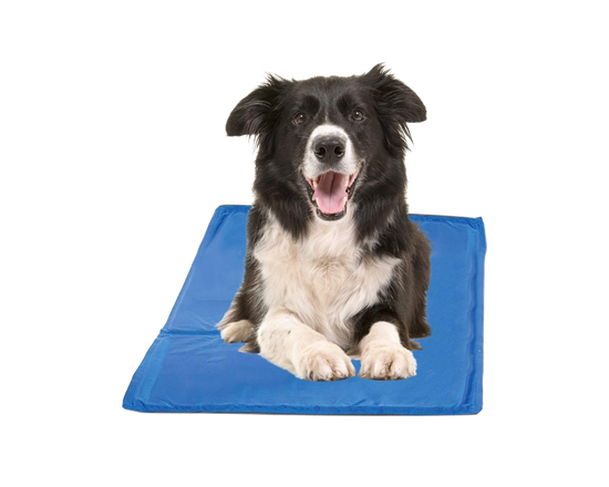 Pet Cool Gel Mat 93 x 78cm