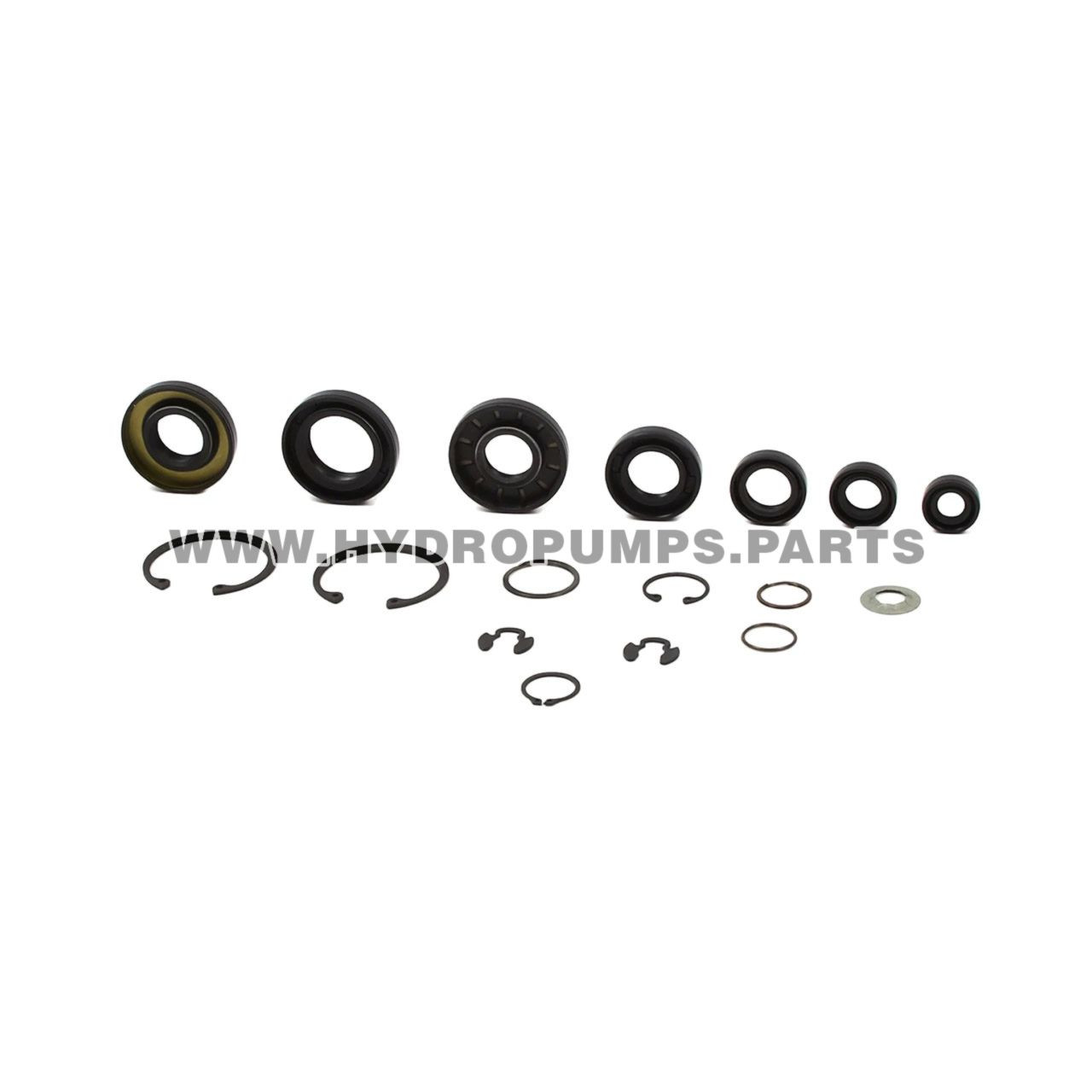 Hydro Gear 70853 - Kit Seals And Retaining Rings - Image 1
