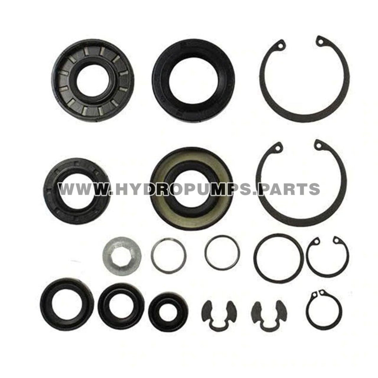 Hydro Gear 70853 - Kit Seals And Retaining Rings - Image 3