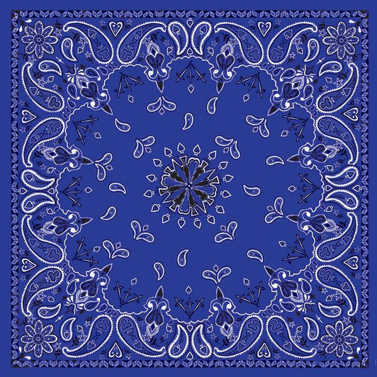 New Zan Headgear Flydanna in Navy Blue Paisley