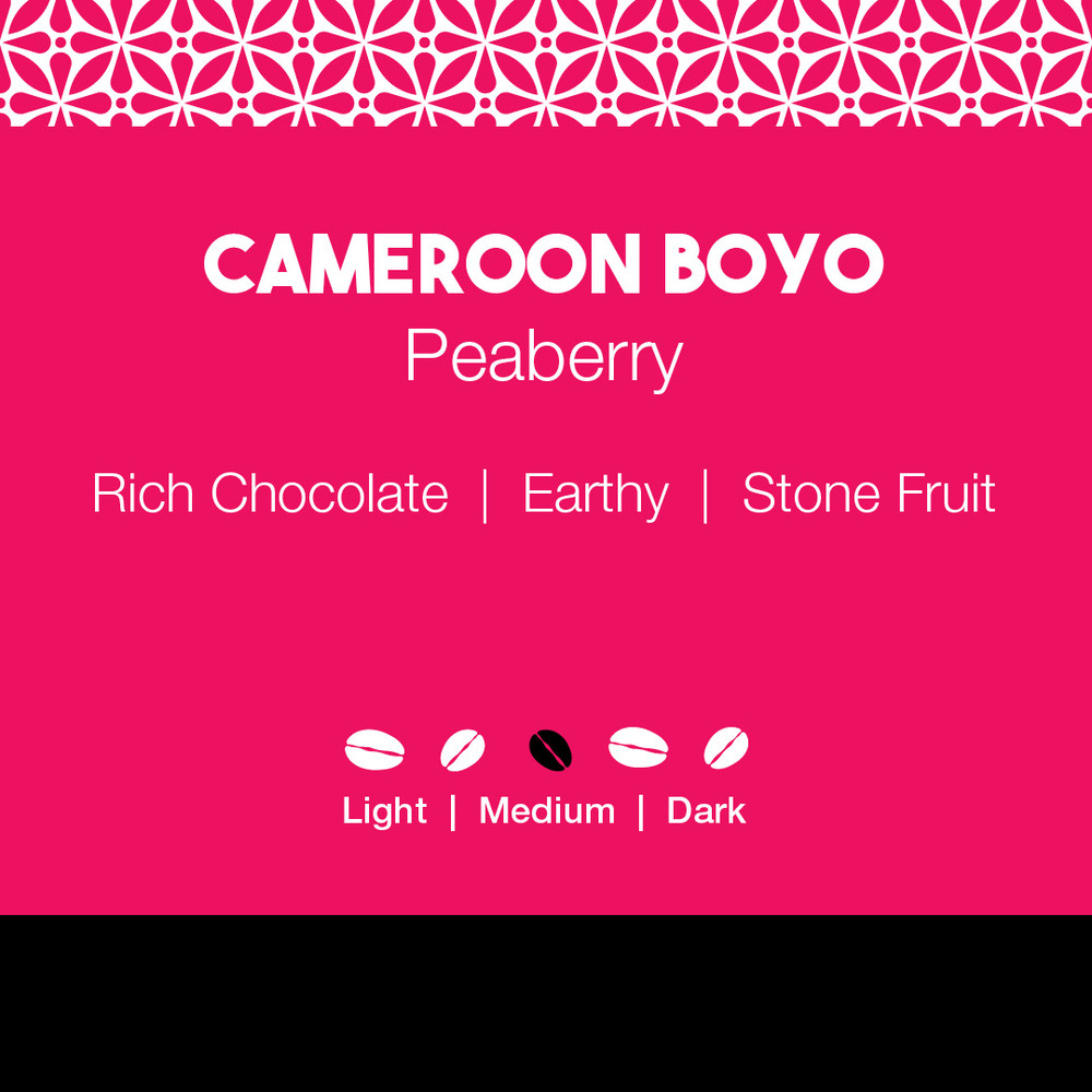 Cameroon Boyo Peaberry Coffee