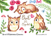 Neutral Owl Clip Art, Watercolor owls, baby owls watercolor, with flowers, branches. Woodland, forest clip art bundle. Roses, bow tie and bow for boy and girl, branches, owl birthday