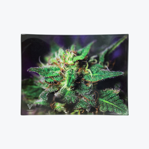 V. Syndicate Glass Rolling Tray Small - Blue Dream