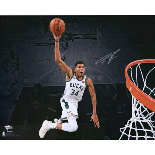 "GIANNIS ANTETOKOUNMPO Autographed Milwaukee Bucks 'Dunking' Spotlight 16"" x 20"" Photograph FANATICS"