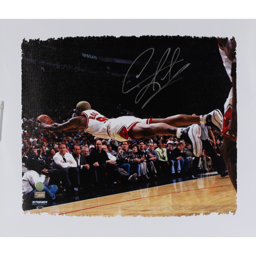 "DENNIS RODMAN Autographed Chicago Bulls 16"" x 22"" ""Diving"" Canvas FANATICS"
