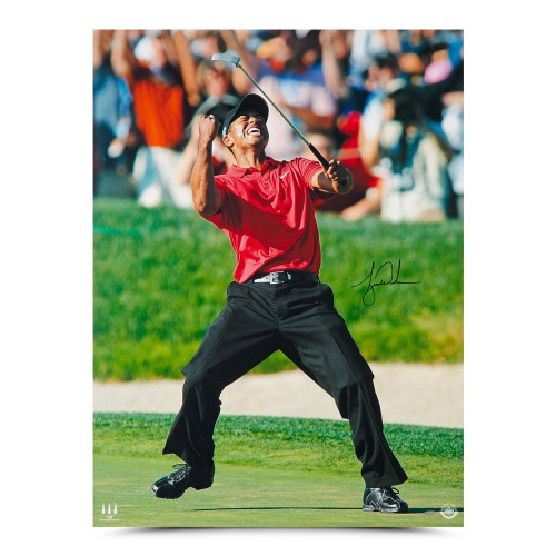 """TIGER WOODS Autographed 2008 US Open Champ 30"""" x 40"""" Photograph UDA"""