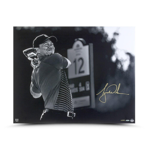 "TIGER WOODS autographed ""Gold Drive"" 24"" x 30"" Photo UDA LE 100"
