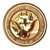 U.S. Navy Insignia Wall Decor