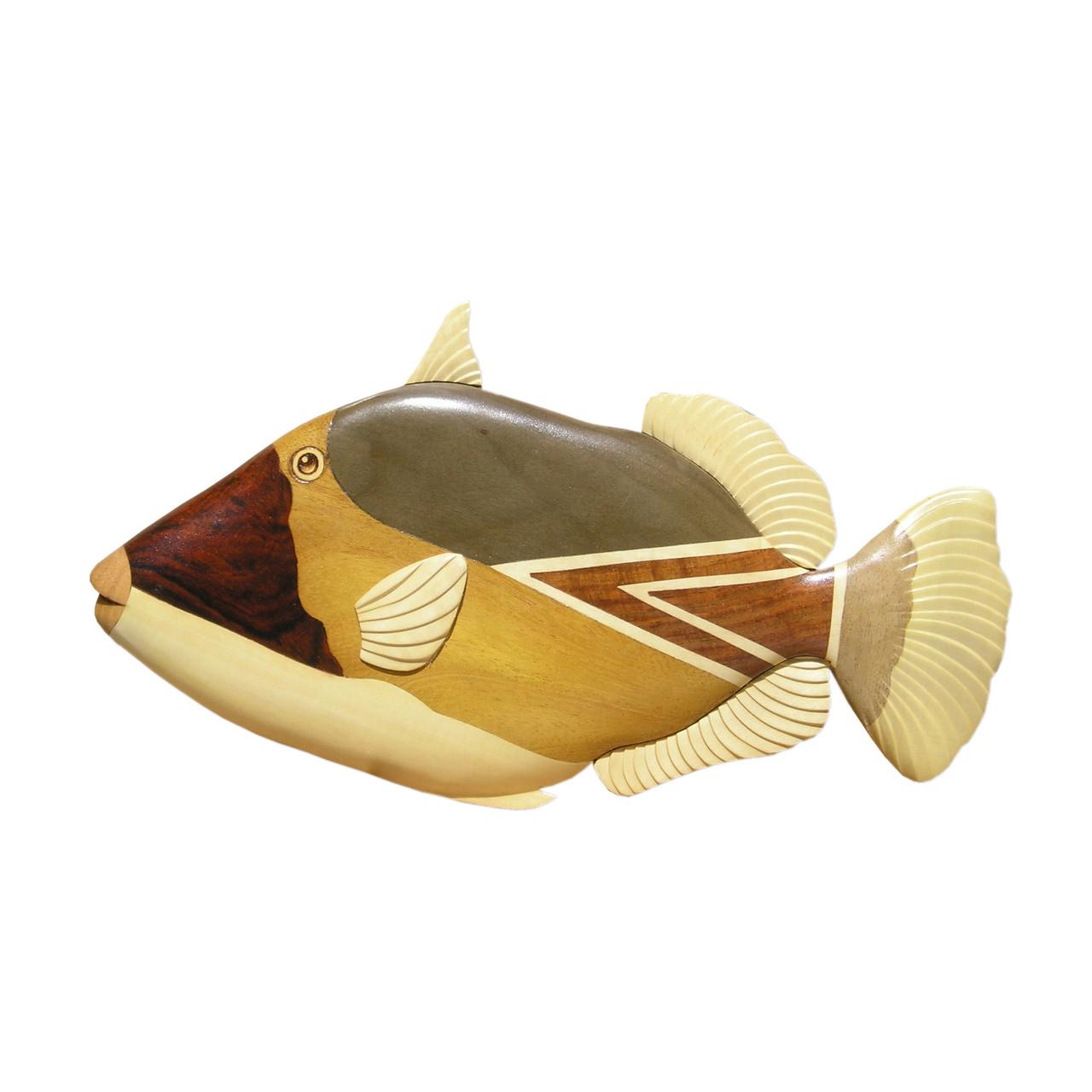 Reef Triggerfish Humuhumu