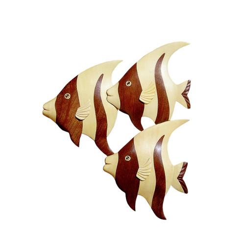 Three Angelfishes