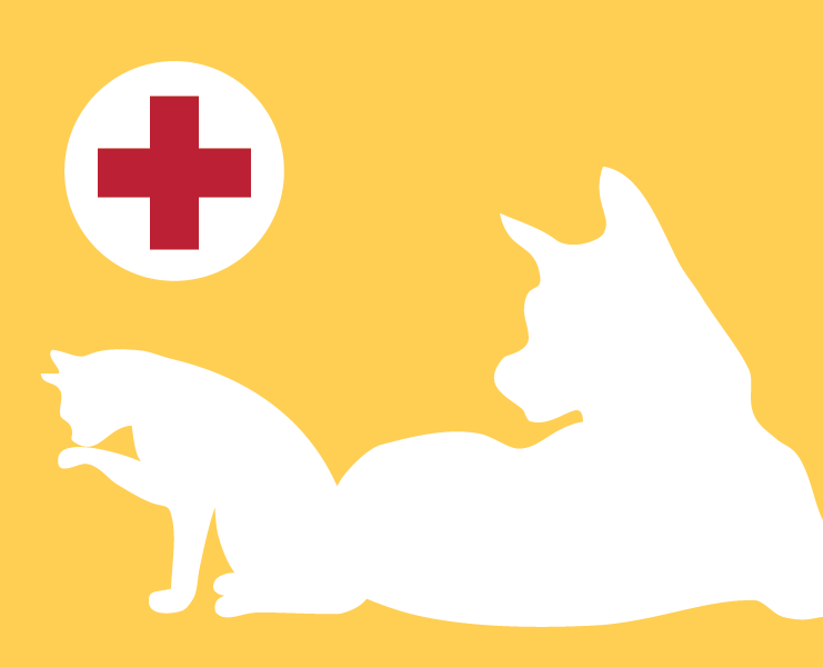 A white outline of a dog and cat with a bright yellow backdrop.