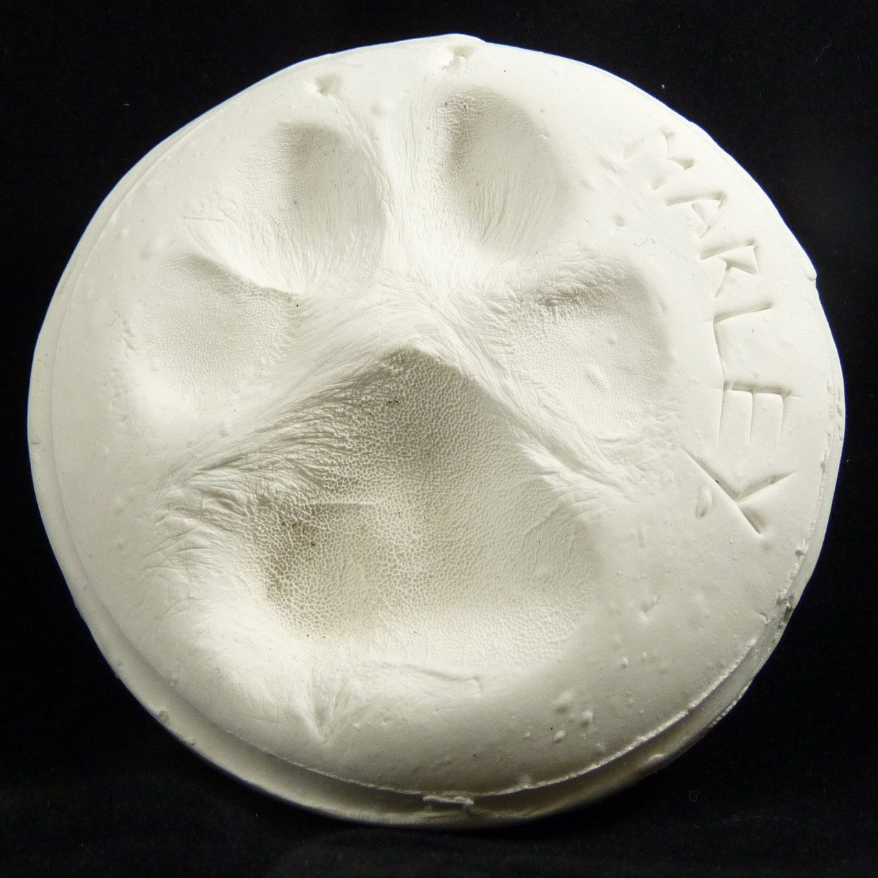 Hand, Foot and Paw Print Clay Impression Kit