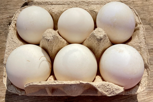 Organic Free Range Duck Eggs - 1/2 Dozen