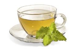provexcv-green-tea-2x.jpg