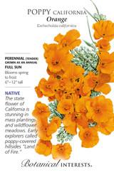 Poppy California Orange Native