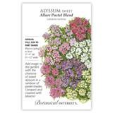 Allure Pastel Blend Sweet Alyssum Seeds