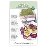 Purple Kohlrabi Sprouts Seeds Organic