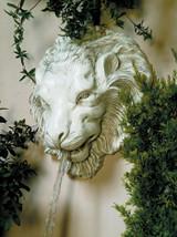 Lion Head, Large