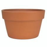 Terra Cotta Fern Azalea Pot - 6.5 inch