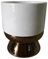 Glazed Ceramic Lex White/Gold - 6 inch