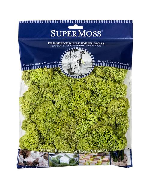 SuperMoss Reindeer Moss Preserved Chartreuse - 4oz
