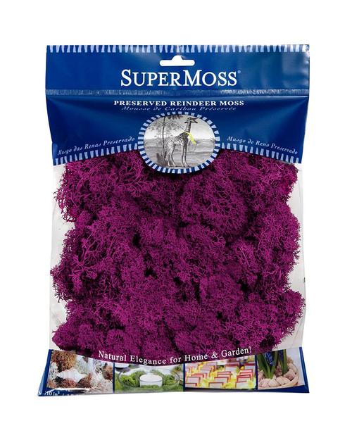 SuperMoss Reindeer Moss Preserved Fuchsia - 4oz