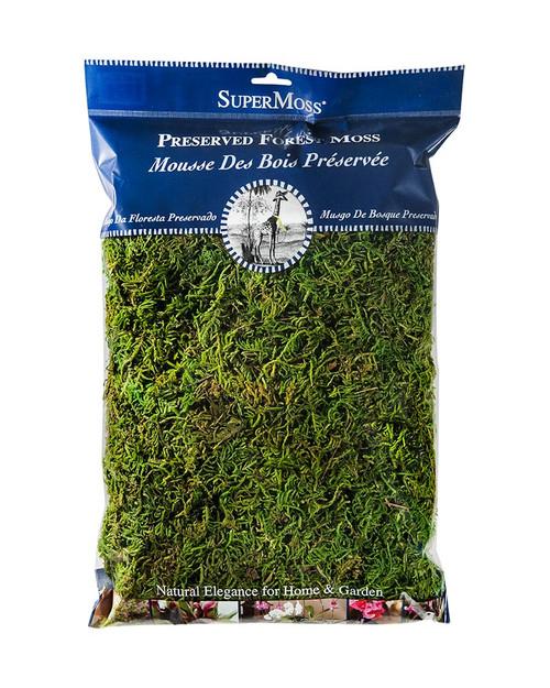 SuperMoss Forest Moss Preserved Fresh Green - 8oz