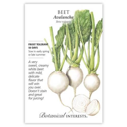 Avalanche Beet Seeds